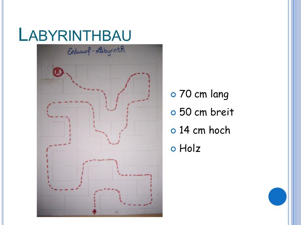 L ABYRINTHBAU 70 cm lang 50 cm breit 14 cm hoch Holz