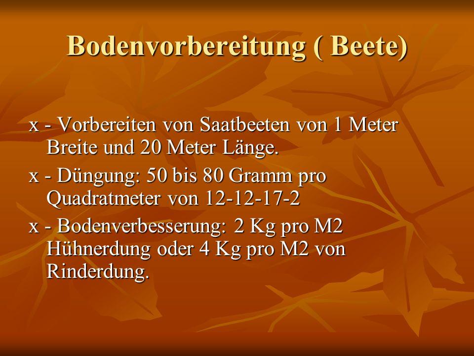 Bodenvorbereitung ( Beete) x - Vorbereiten von Saatbeeten von 1 Meter Breite und 20 Meter Länge.