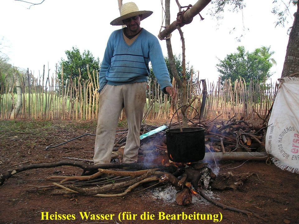 Heisses Wasser (für die Bearbeitung)