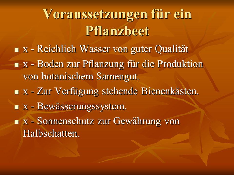 Voraussetzungen für ein Pflanzbeet x - Reichlich Wasser von guter Qualität x - Reichlich Wasser von guter Qualität x - Boden zur Pflanzung für die Produktion von botanischem Samengut.