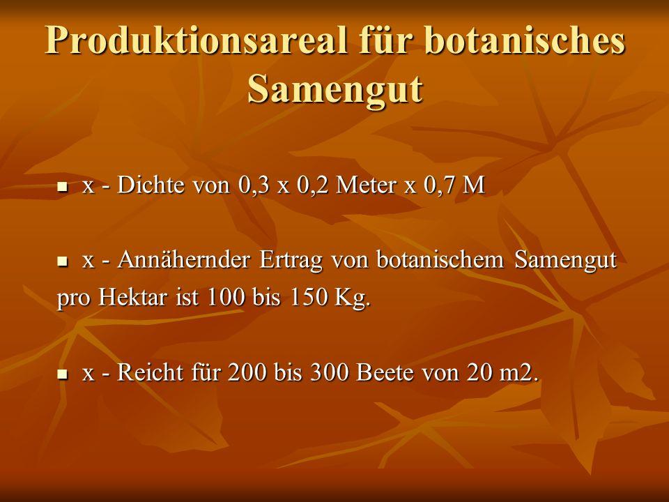 Produktionsareal für botanisches Samengut x - Dichte von 0,3 x 0,2 Meter x 0,7 M x - Dichte von 0,3 x 0,2 Meter x 0,7 M x - Annähernder Ertrag von botanischem Samengut x - Annähernder Ertrag von botanischem Samengut pro Hektar ist 100 bis 150 Kg.