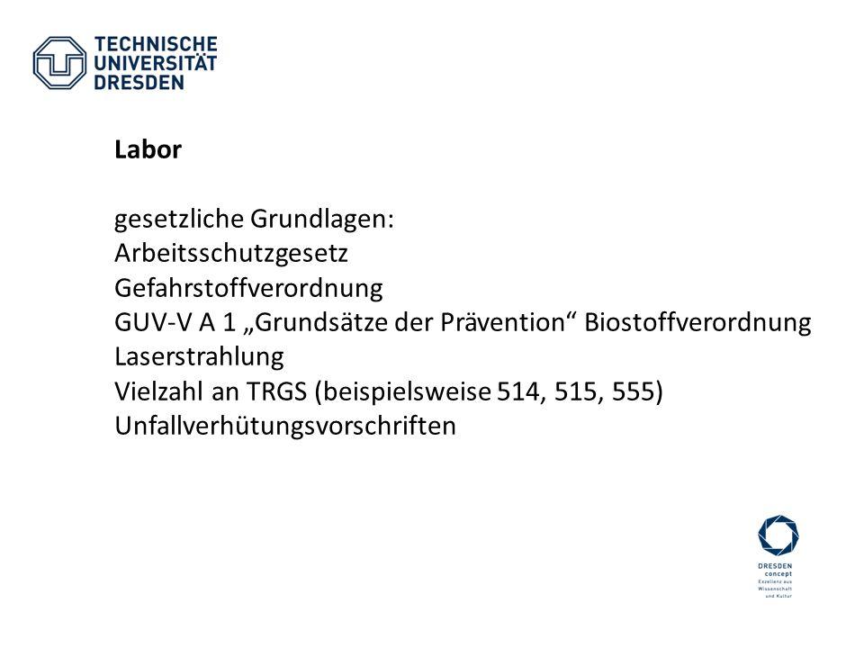 Labor gesetzliche Grundlagen: Arbeitsschutzgesetz Gefahrstoffverordnung GUV-V A 1 Grundsätze der Prävention Biostoffverordnung Laserstrahlung Vielzahl