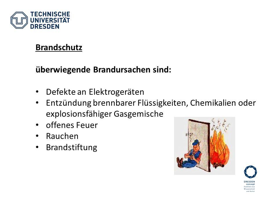 Brandschutz überwiegende Brandursachen sind: Defekte an Elektrogeräten Entzündung brennbarer Flüssigkeiten, Chemikalien oder explosionsfähiger Gasgemi