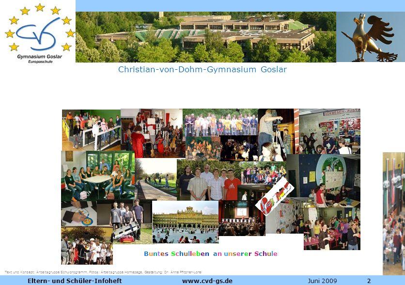 Dienstleistungen für die Pharmazeutische Industrie Juni 2009Eltern- und Schüler-Infoheft www.cvd-gs.de222 Christian-von-Dohm-Gymnasium Goslar Buntes S