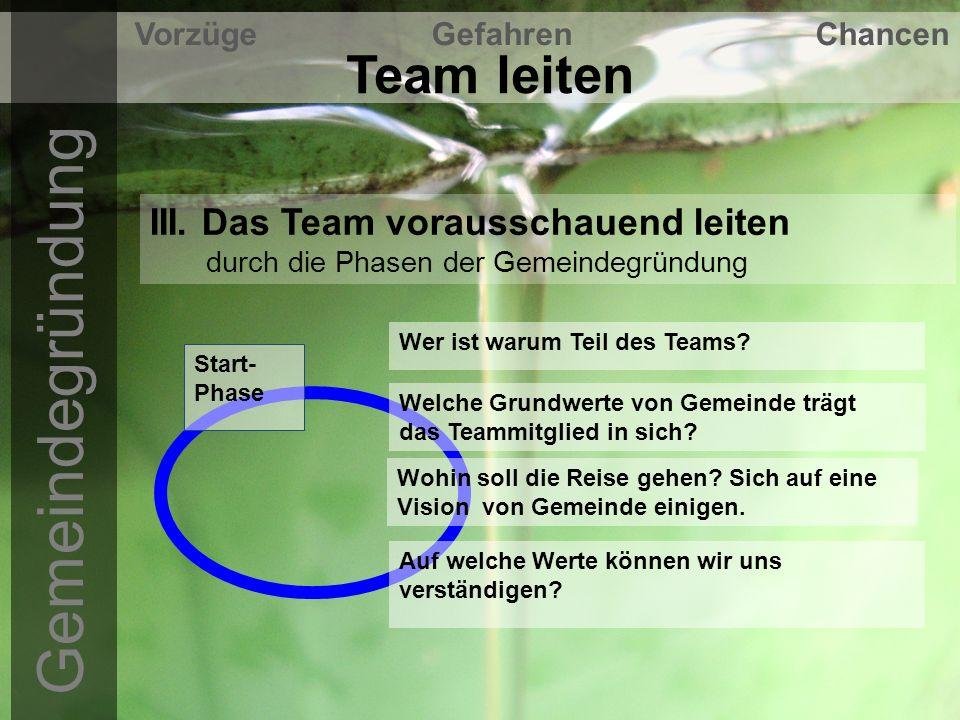 Team leiten Vorzüge Gefahren Chancen III.
