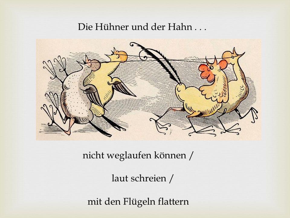 Die Hühner und der Hahn... nicht weglaufen können / laut schreien / mit den Flügeln flattern