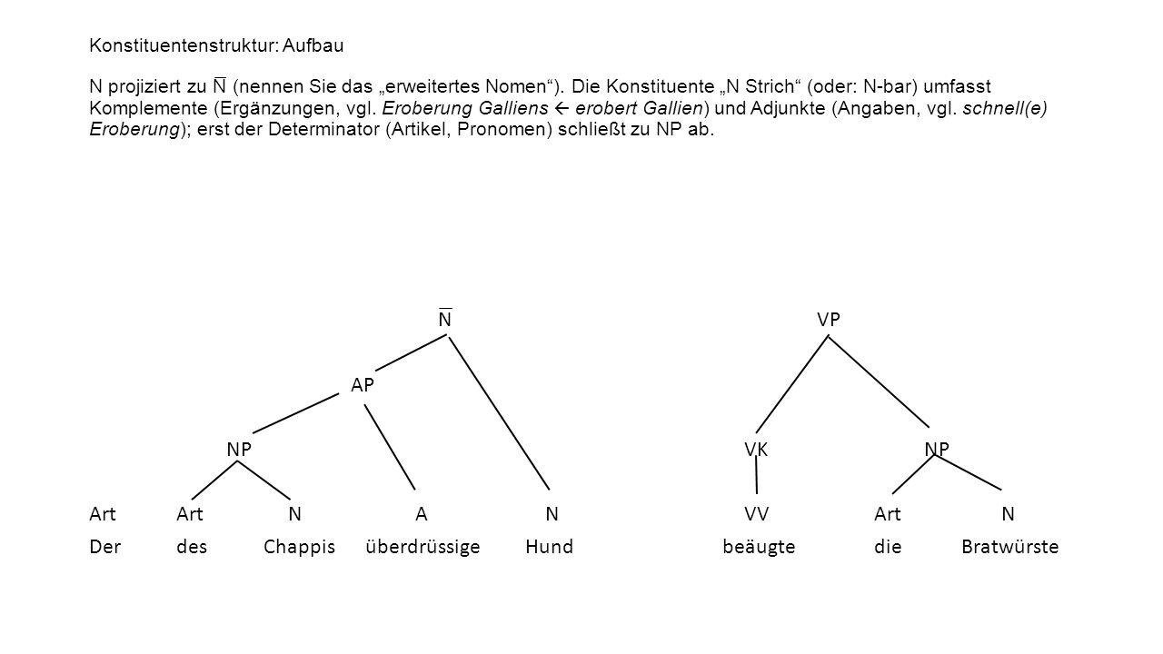 Konstituentenstruktur: Aufbau N projiziert zu N ̅ (nennen Sie das erweitertes Nomen). Die Konstituente N Strich (oder: N-bar) umfasst Komplemente (Erg