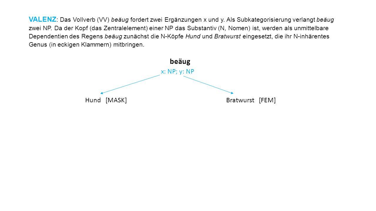 VALENZ : Das Vollverb (VV) beäug fordert zwei Ergänzungen x und y. Als Subkategorisierung verlangt beäug zwei NP. Da der Kopf (das Zentralelement) ein