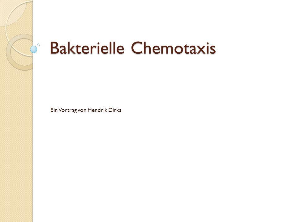 Bakterielle Chemotaxis Ein Vortrag von Hendrik Dirks