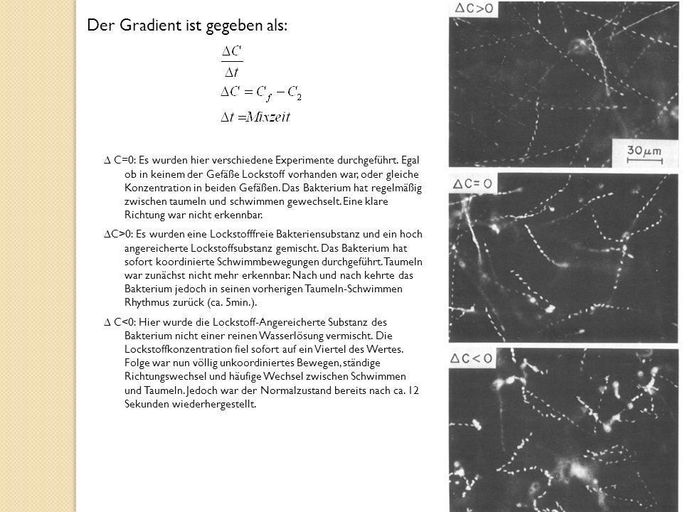 C=0: Es wurden hier verschiedene Experimente durchgeführt.