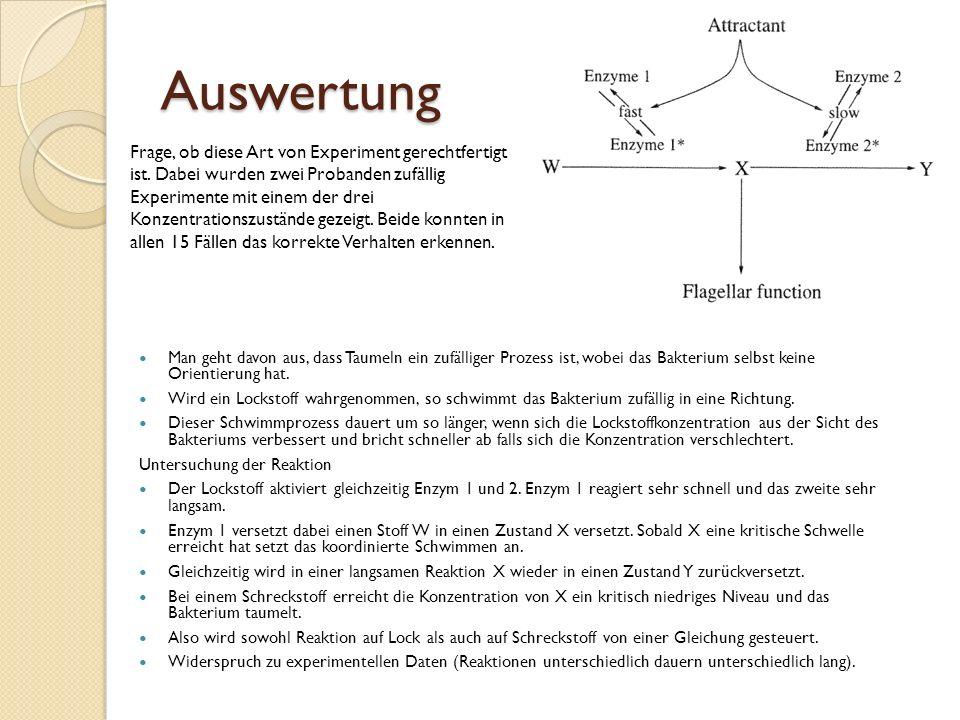 Auswertung Man geht davon aus, dass Taumeln ein zufälliger Prozess ist, wobei das Bakterium selbst keine Orientierung hat.