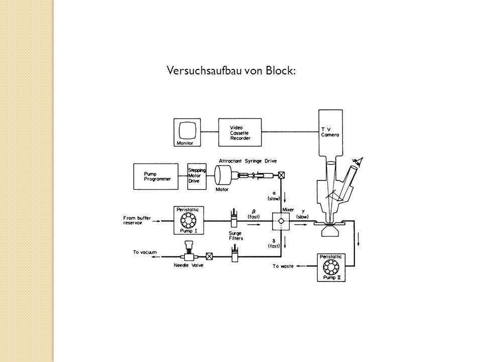 Versuchsaufbau von Block: