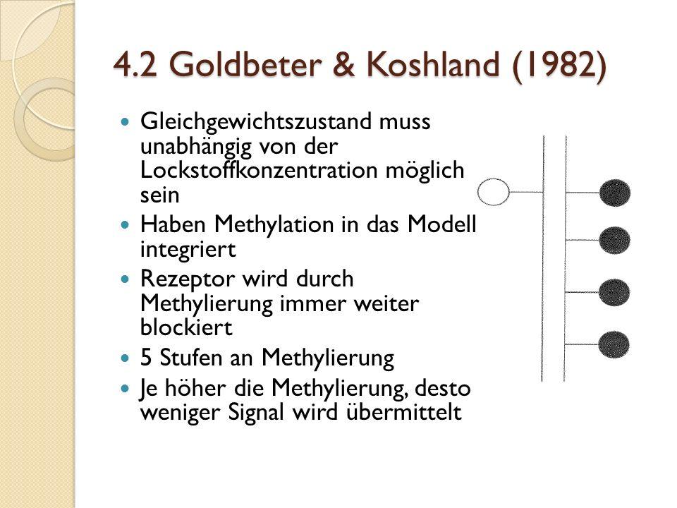 4.2 Goldbeter & Koshland (1982) Gleichgewichtszustand muss unabhängig von der Lockstoffkonzentration möglich sein Haben Methylation in das Modell integriert Rezeptor wird durch Methylierung immer weiter blockiert 5 Stufen an Methylierung Je höher die Methylierung, desto weniger Signal wird übermittelt