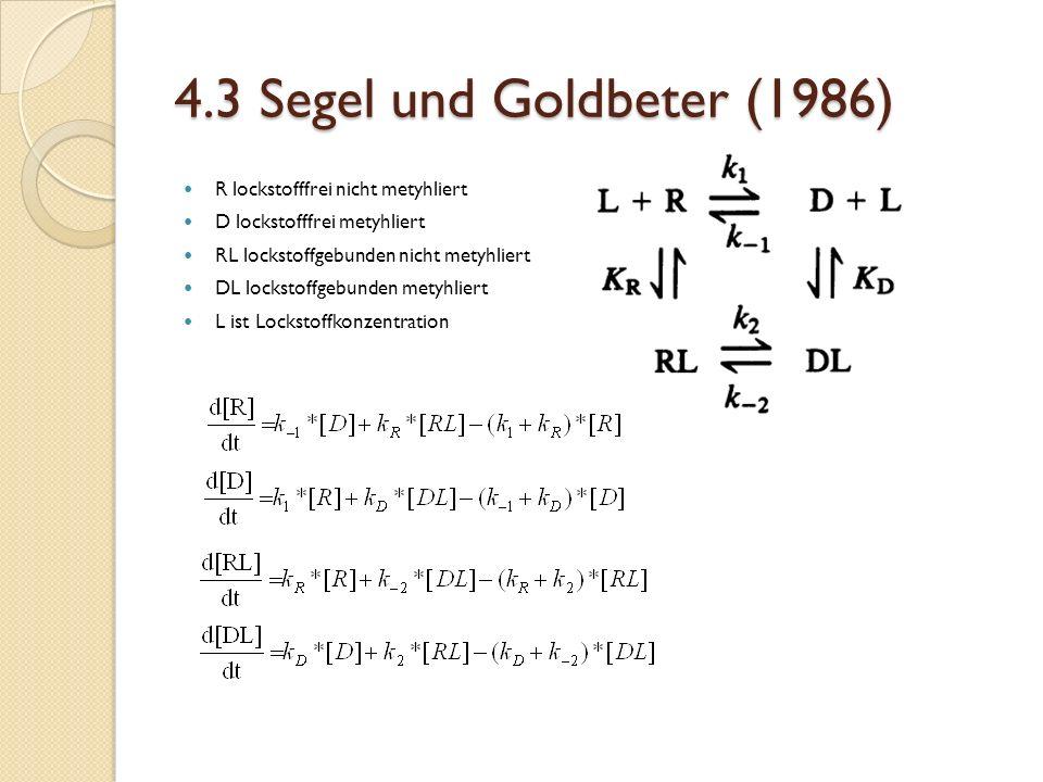 4.3 Segel und Goldbeter (1986) R lockstofffrei nicht metyhliert D lockstofffrei metyhliert RL lockstoffgebunden nicht metyhliert DL lockstoffgebunden metyhliert L ist Lockstoffkonzentration