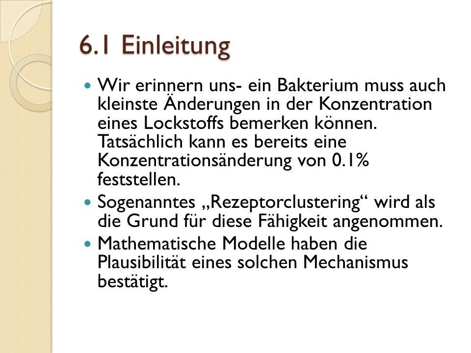 6.1 Einleitung Wir erinnern uns- ein Bakterium muss auch kleinste Änderungen in der Konzentration eines Lockstoffs bemerken können.