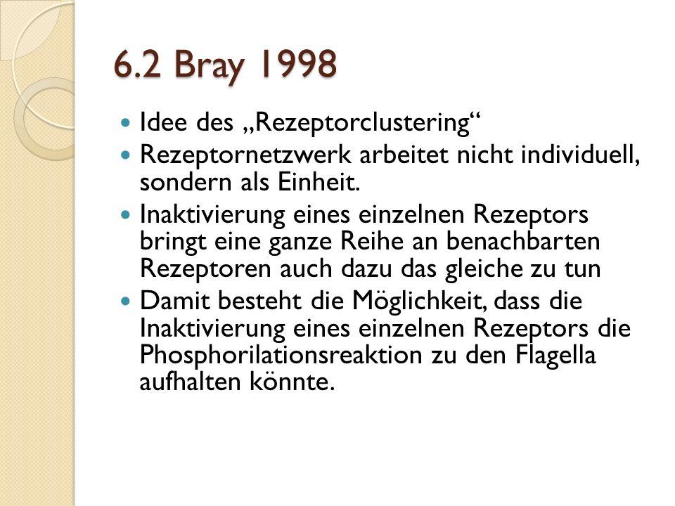 6.2 Bray 1998 Idee des Rezeptorclustering Rezeptornetzwerk arbeitet nicht individuell, sondern als Einheit.
