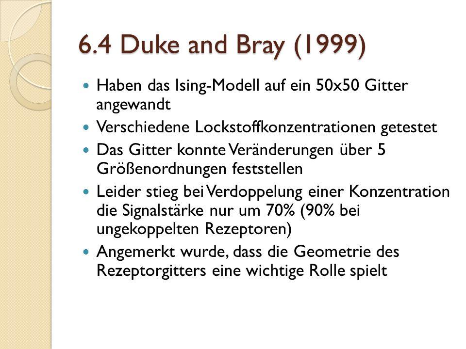 6.4 Duke and Bray (1999) Haben das Ising-Modell auf ein 50x50 Gitter angewandt Verschiedene Lockstoffkonzentrationen getestet Das Gitter konnte Veränderungen über 5 Größenordnungen feststellen Leider stieg bei Verdoppelung einer Konzentration die Signalstärke nur um 70% (90% bei ungekoppelten Rezeptoren) Angemerkt wurde, dass die Geometrie des Rezeptorgitters eine wichtige Rolle spielt