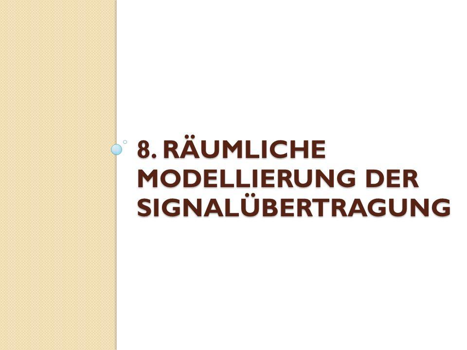 8. RÄUMLICHE MODELLIERUNG DER SIGNALÜBERTRAGUNG