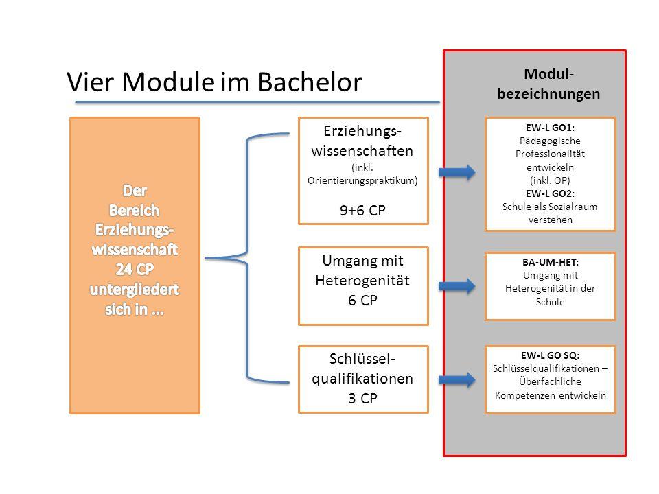 Studienaufbau im Bachelor Erziehungs- wissenschaften 9 CPDer Bereich Erziehungs- wissenschaft (24 CP) untergliedert sich in... schulpraktische Studien