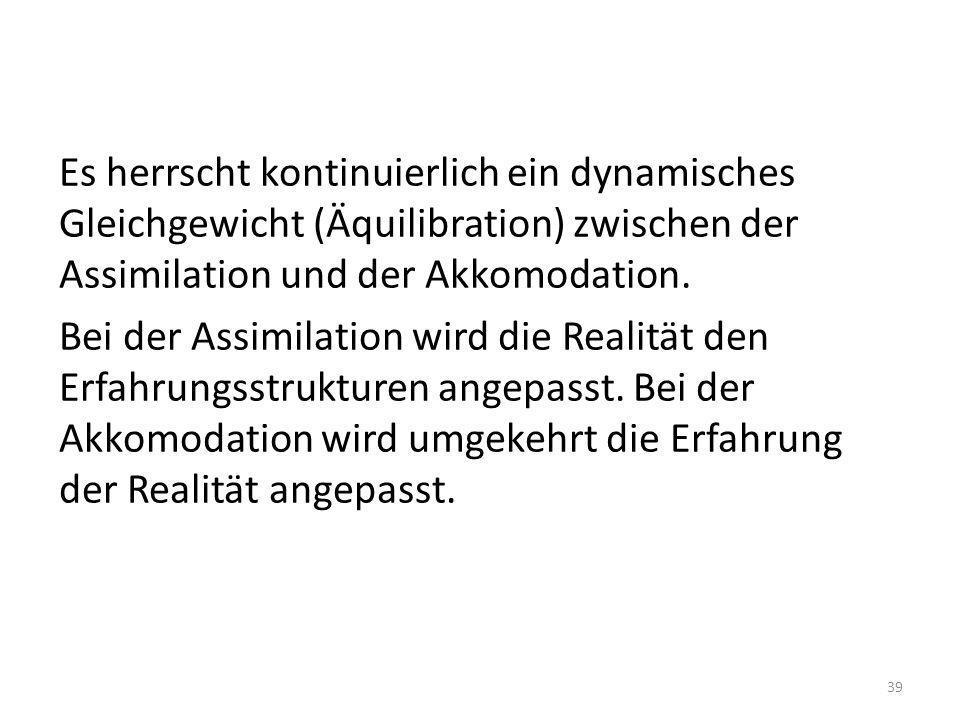 Es herrscht kontinuierlich ein dynamisches Gleichgewicht (Äquilibration) zwischen der Assimilation und der Akkomodation. Bei der Assimilation wird die