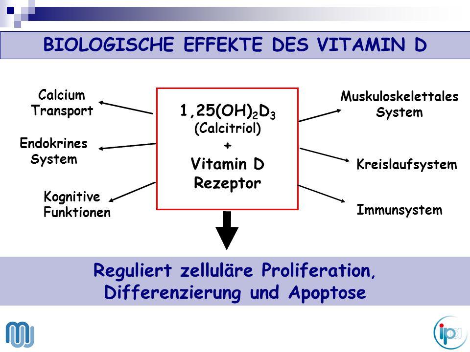 Serum 25(OH)D 3 7 - Dehydrocholesterol Nahrung Haut Vitamin D Leber 25OHase Metaboliten 24OHase Niere 1,25(OH) 2 D 3 (VDR) Endokrine Aktivität 25(OH)D 3 1αOHase KOLON Autokrine / parakrine Aktivität (VDR) 1,25(OH) 2 D 3 25(OH)D 3 Metaboliten 24OHase 1αOHase Biosynthese und Stoffwechsel