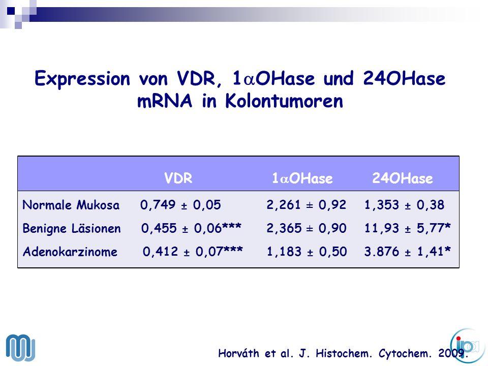 . Expression von VDR, 1 OHase und 24OHase mRNA in Kolontumoren Horváth et al. J. Histochem. Cytochem. 2009. VDR 1 OHase 24OHase Normale Mukosa 0,749 ±