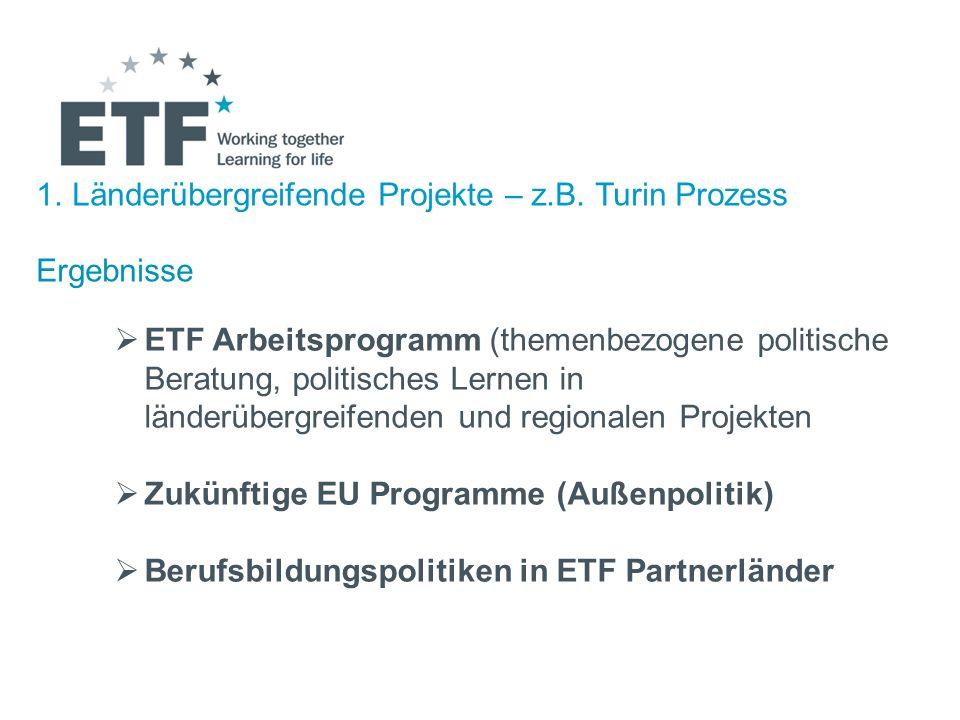 1.Länderübergreifende Projekte – z.B. Turin Prozess Ergebnisse ETF Arbeitsprogramm (themenbezogene politische Beratung, politisches Lernen in länderüb