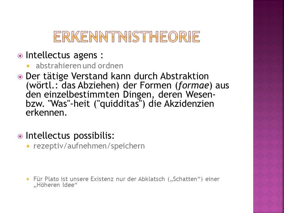 Intellectus agens : abstrahieren und ordnen Der tätige Verstand kann durch Abstraktion (wörtl.: das Abziehen) der Formen (formae) aus den einzelbestim