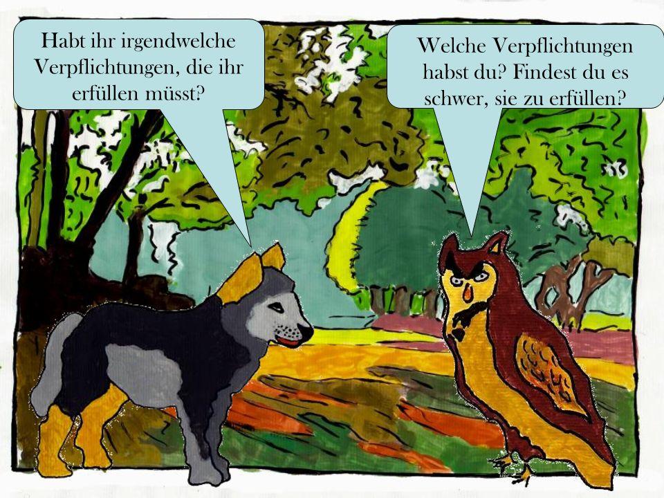 Glaubt ihr, dass der Wolf verantwortungsvoll gegenüber sich selbst ist.