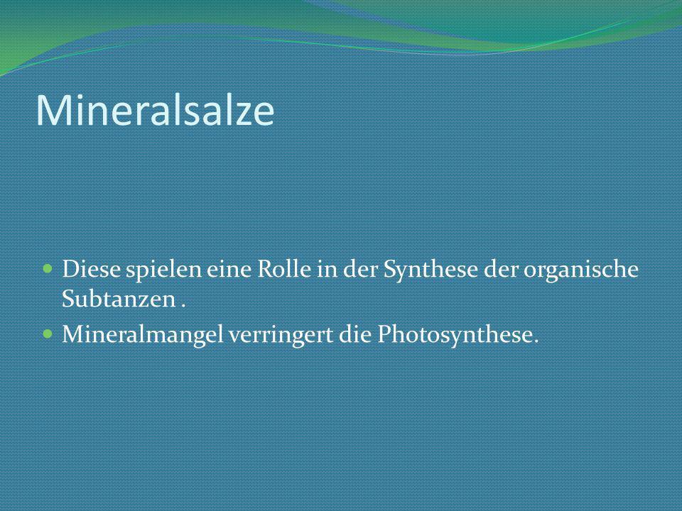 Mineralsalze Diese spielen eine Rolle in der Synthese der organische Subtanzen.
