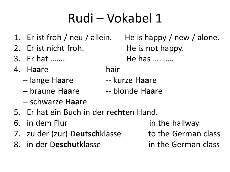 Rudi – Vokabel 1 1.Er ist froh / neu / allein. He is happy / new / alone. 2.Er ist nicht froh. He is not happy. 3.Er hat …….. He has ………. 4.Haarehair