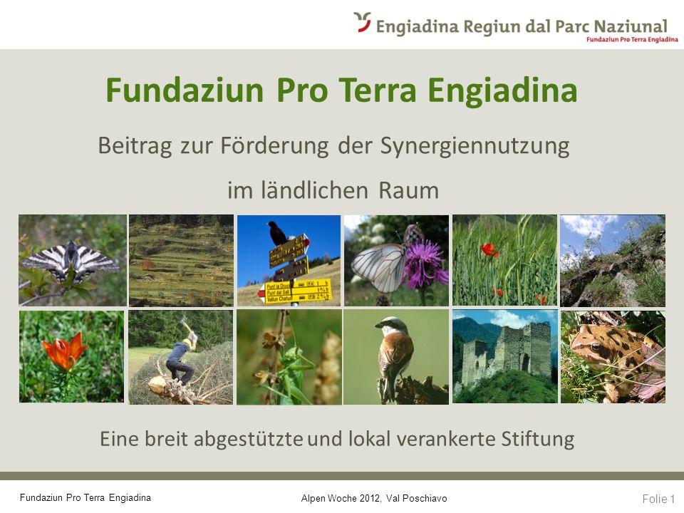 Alpen Woche 2012, Val Poschiavo Fundaziun Pro Terra Engiadina Beitrag zur Förderung der Synergiennutzung im ländlichen Raum Eine breit abgestützte und lokal verankerte Stiftung Folie 1