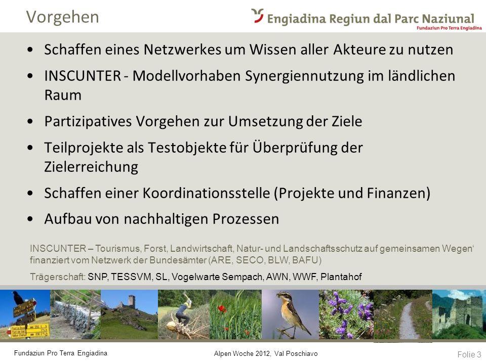 Fundaziun Pro Terra Engiadina Alpen Woche 2012, Val Poschiavo Vorgehen Schaffen eines Netzwerkes um Wissen aller Akteure zu nutzen INSCUNTER - Modellv