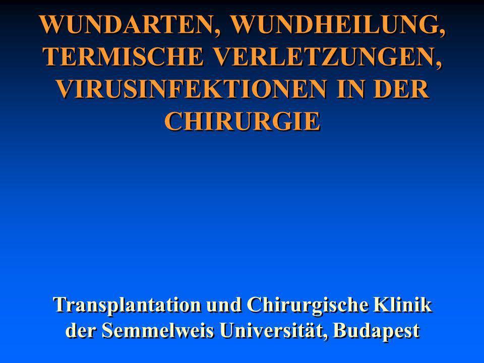 WUNDARTEN, WUNDHEILUNG, TERMISCHE VERLETZUNGEN, VIRUSINFEKTIONEN IN DER CHIRURGIE Transplantation und Chirurgische Klinik der Semmelweis Universität,
