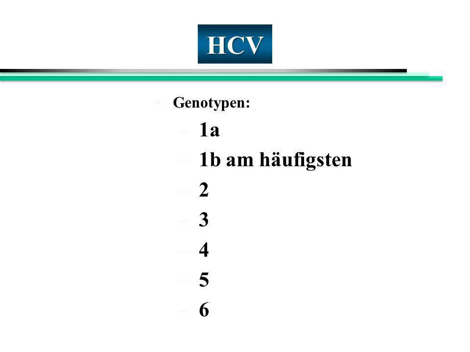 HCV Genotypen: – 1a – 1b am häufigsten – 2 – 3 – 4 – 5 – 6