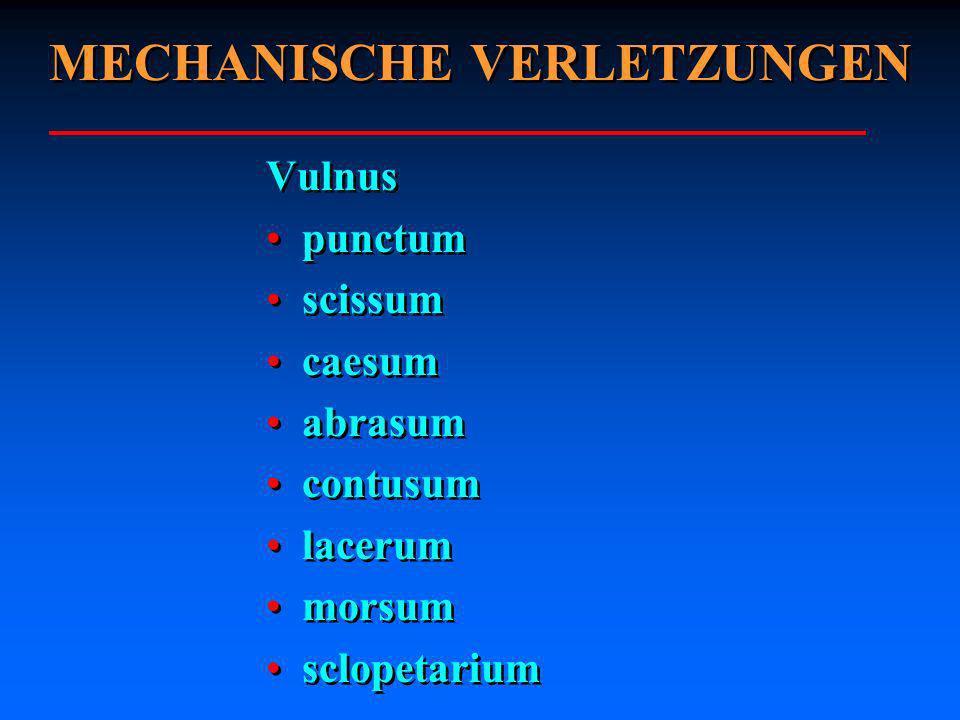 Vulnus punctum scissum caesum abrasum contusum lacerum morsum sclopetarium Vulnus punctum scissum caesum abrasum contusum lacerum morsum sclopetarium