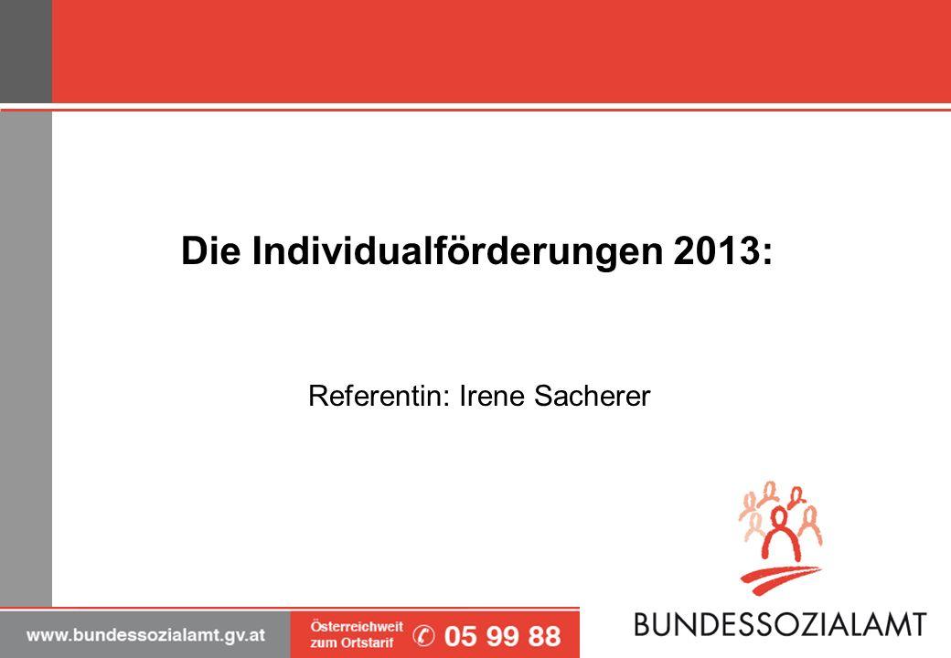Die Individualförderungen 2013: Referentin: Irene Sacherer