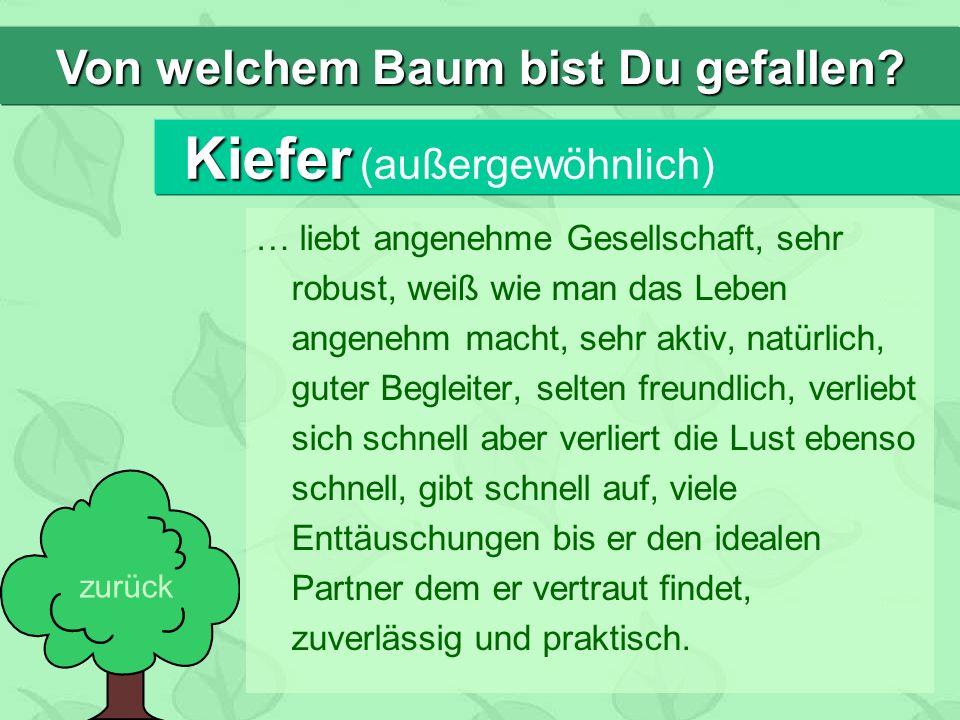 Kiefer Kiefer (außergewöhnlich) … liebt angenehme Gesellschaft, sehr robust, weiß wie man das Leben angenehm macht, sehr aktiv, natürlich, guter Begle
