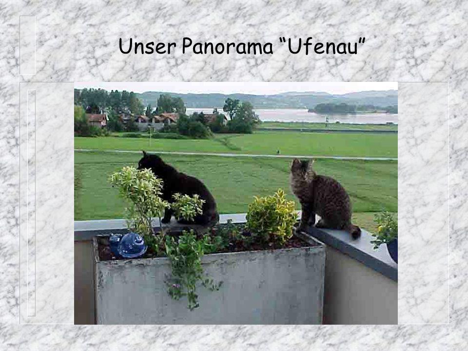 Unser Panorama Ufenau