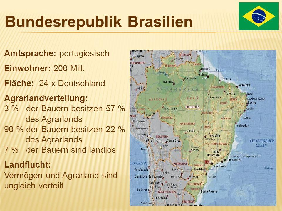 Bundesrepublik Brasilien Amtsprache: portugiesisch Einwohner: 200 Mill. Fläche: 24 x Deutschland Agrarlandverteilung: 3 % der Bauern besitzen 57 % des