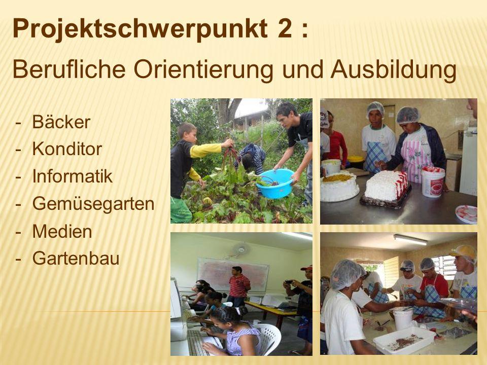 - Bäcker - Konditor - Informatik - Gemüsegarten - Medien - Gartenbau Projektschwerpunkt 2 : Berufliche Orientierung und Ausbildung