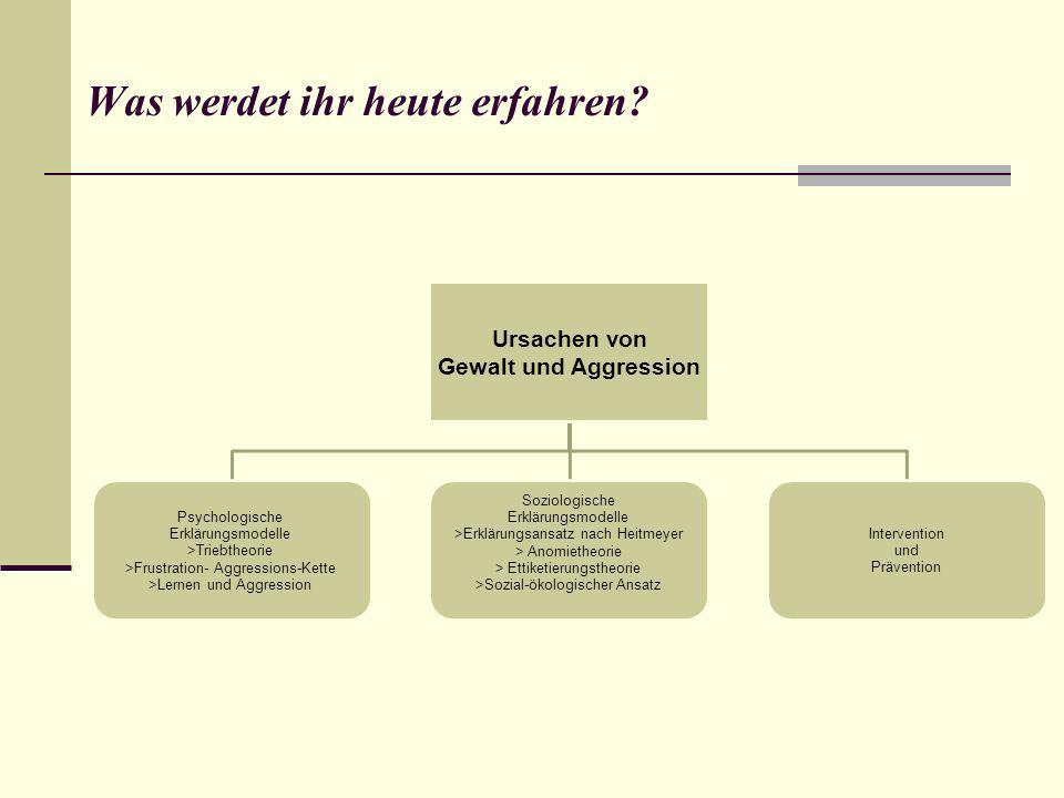 Ursachen von Gewalt und Aggression Gewalt als Ausdruck von Individualisierungs- tendenzen und Desintegration Das Desintegrations- Verunsicherungs- Gewalt- Konzept von W.