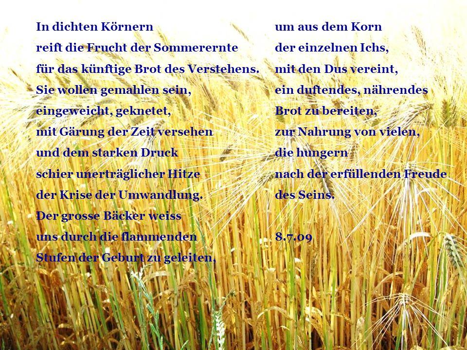 um aus dem Korn der einzelnen Ichs, mit den Dus vereint, ein duftendes, nährendes Brot zu bereiten, zur Nahrung von vielen, die hungern nach der erfül