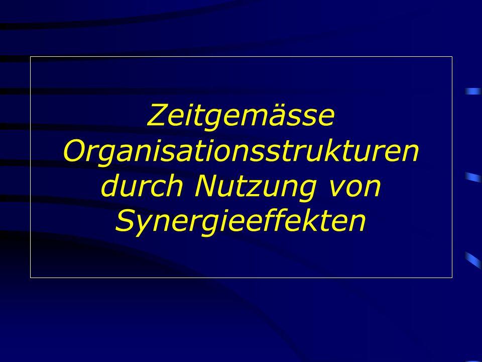Zeitgemässe Organisationsstrukturen durch Nutzung von Synergieeffekten
