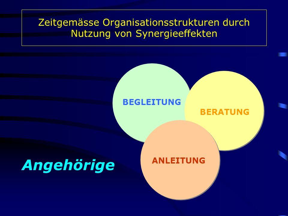 BEGLEITUNG BERATUNG ANLEITUNG Angehörige Zeitgemässe Organisationsstrukturen durch Nutzung von Synergieeffekten