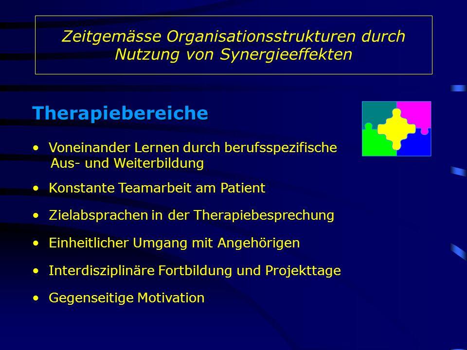 Therapiebereiche Voneinander Lernen durch berufsspezifische Aus- und Weiterbildung Zielabsprachen in der Therapiebesprechung Konstante Teamarbeit am P