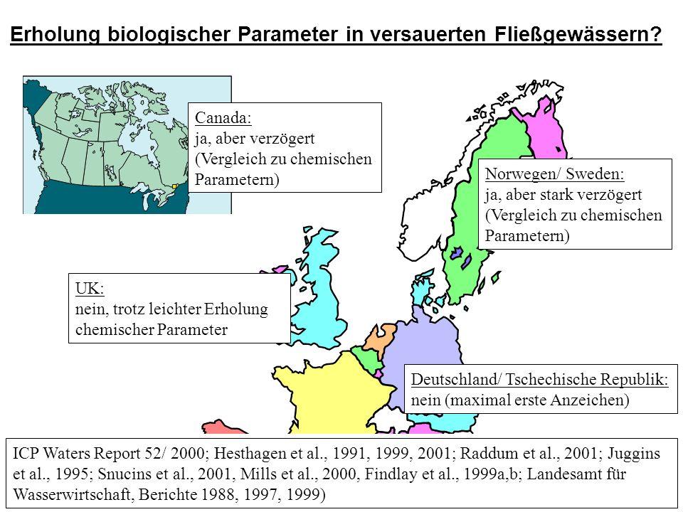 ICP Waters Report 52/ 2000; Hesthagen et al., 1991, 1999, 2001; Raddum et al., 2001; Juggins et al., 1995; Snucins et al., 2001, Mills et al., 2000, Findlay et al., 1999a,b; Landesamt für Wasserwirtschaft, Berichte 1988, 1997, 1999) Erholung biologischer Parameter in versauerten Fließgewässern.