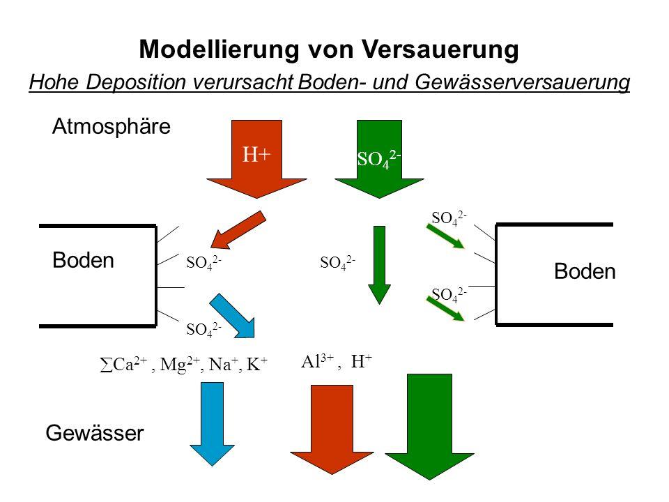 Gewässer Boden Atmosphäre Boden SO 4 2- H+ Ca 2+, Mg 2+, Na +, K + SO 4 2- Modellierung von Versauerung Hohe Deposition verursacht Boden- und Gewässerversauerung SO 4 2- Al 3+, H +