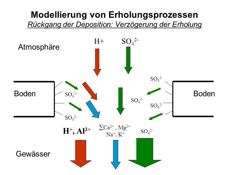Gewässer Boden Atmosphäre Boden SO 4 2- H+ SO 4 2- H +, Al 3+ SO 4 2- Ca 2+, Mg 2+ Na +, K + Modellierung von Erholungsprozessen Rückgang der Deposition: Verzögerung der Erholung