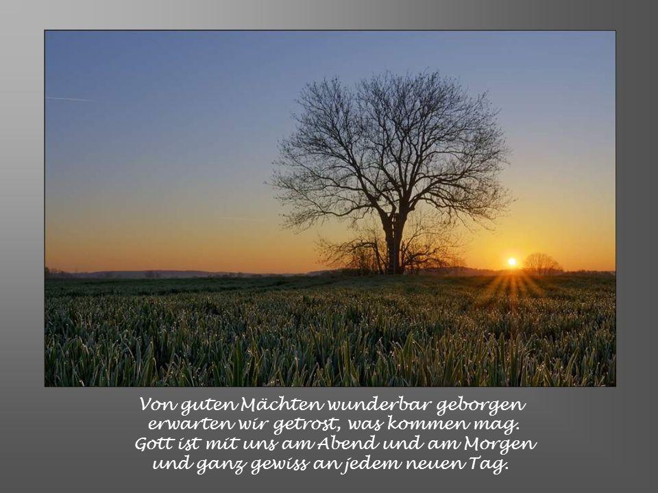 Doch willst Du uns noch einmal Freude schenken an dieser Welt und ihrer Sonne Glanz, dann woll'n wir des Vergangenen gedenken und dann gehört Dir unse